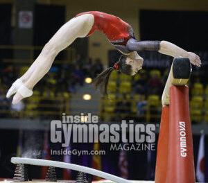 2017 International Gymnix